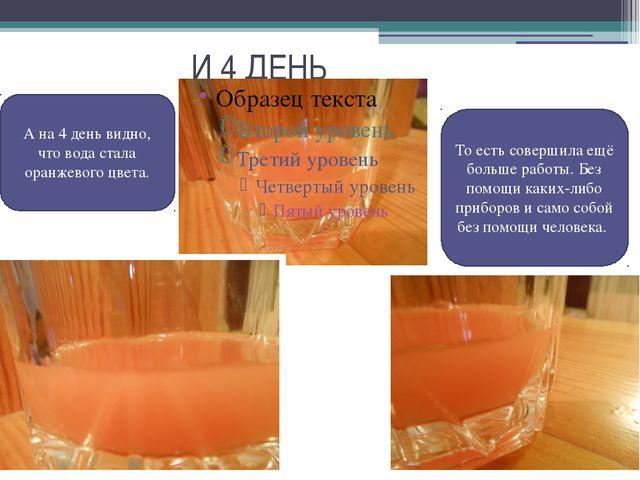 И 4 ДЕНЬ А на 4 день видно, что вода стала оранжевого цвета. То есть соверши...