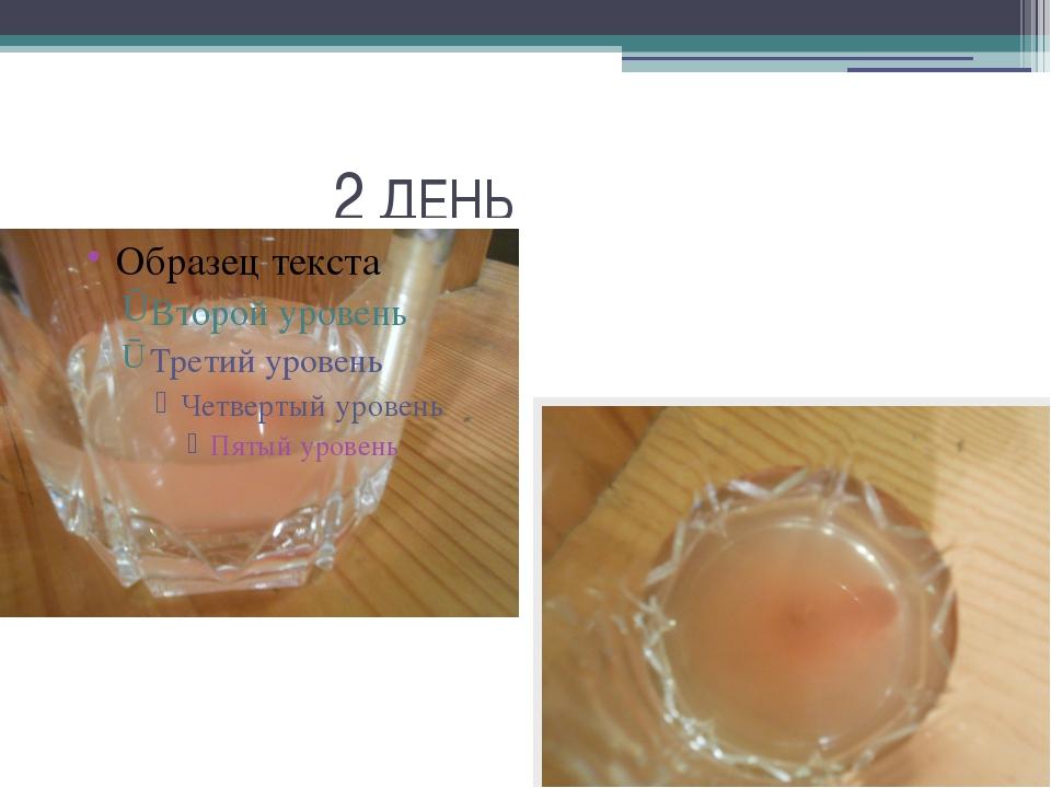 2 ДЕНЬ