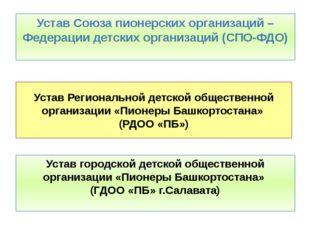 Устав Региональной детской общественной организации «Пионеры Башкортостана» (