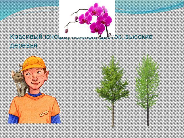 Красивый юноша, нежный цветок, высокие деревья