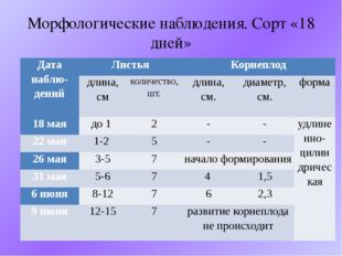Морфологические наблюдения. Сорт «18 дней» Датанаблю-дений Листья Корнеплод д