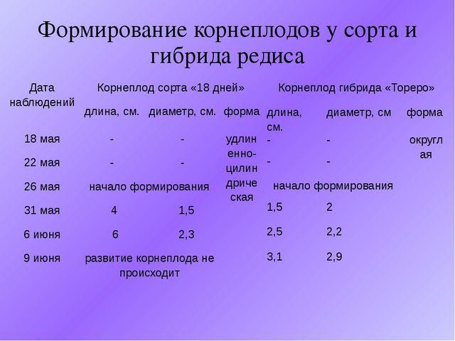 Формирование корнеплодов у сорта и гибрида редиса Дата наблюдений Корнеплод с...