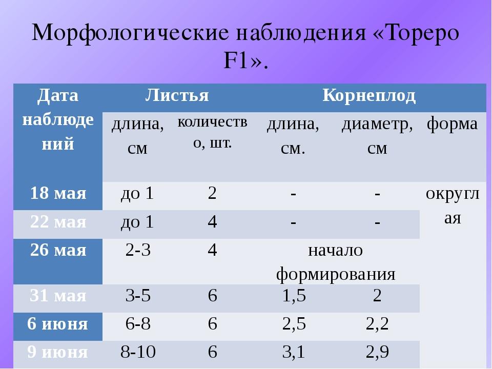 Морфологические наблюдения «Тореро F1». Дата наблюдений Листья Корнеплод длин...