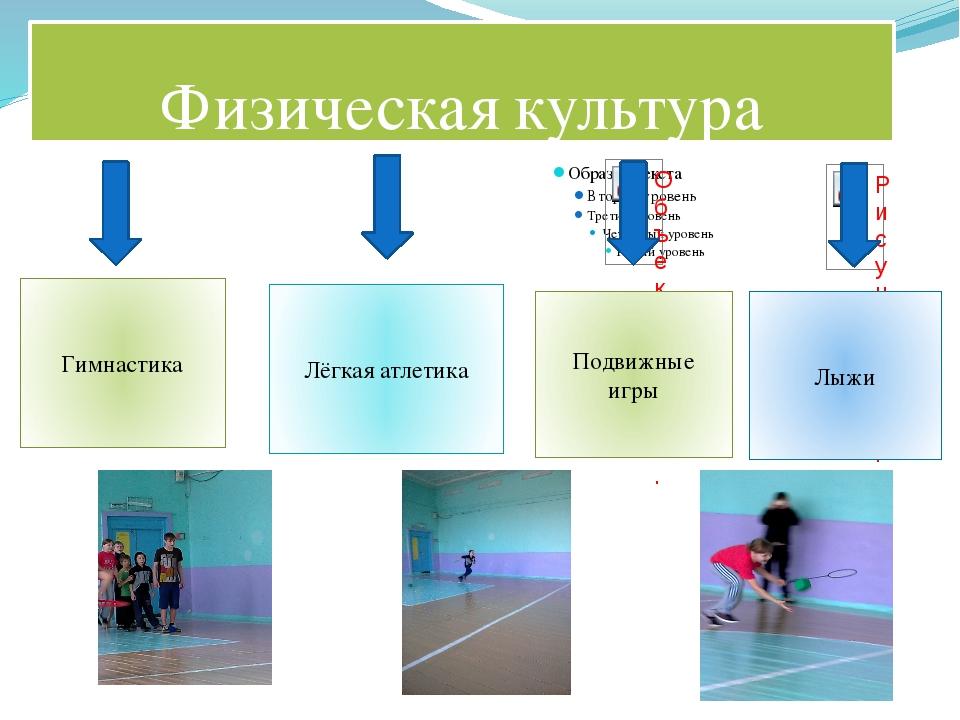 Физическая культура Гимнастика Подвижные игры Лёгкая атлетика Лыжи