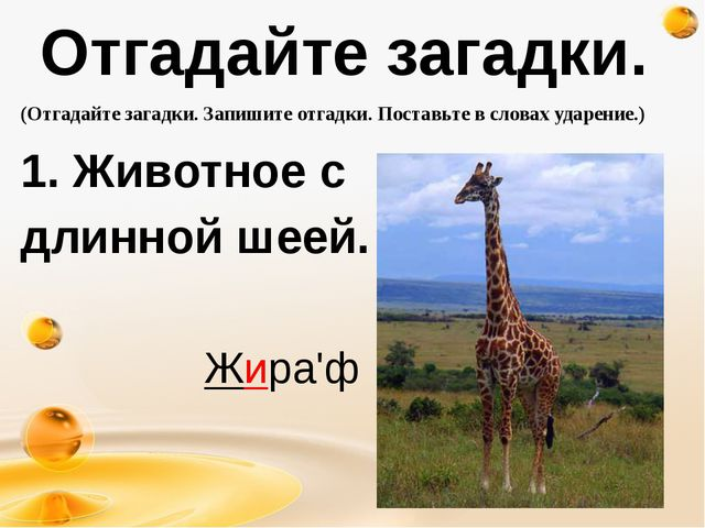 Отгадайте загадки. 1. Животное с длинной шеей. http://freeppt.ru (Отгадайте...