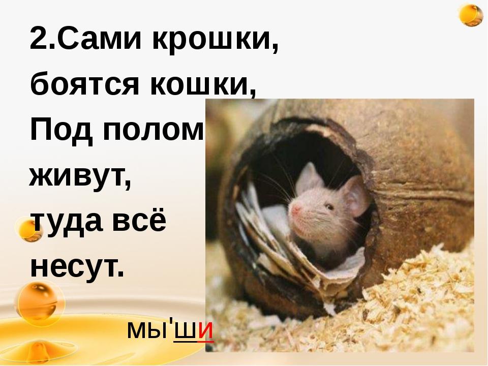 2.Сами крошки, боятся кошки, Под полом живут, туда всё несут. http://freeppt....
