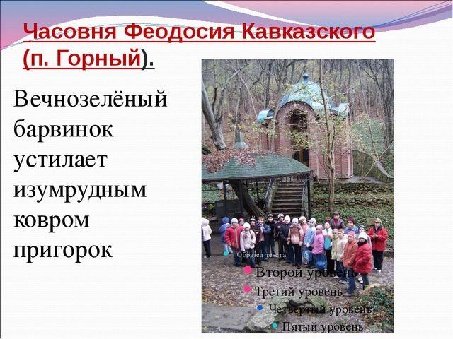 Часовня Феодосия Кавказского (п. Горный). Вечнозелёный барвинок устилает изум...