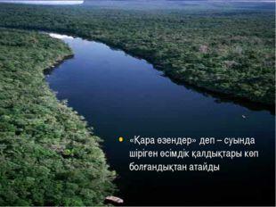 «Қара өзендер» деп – суында шіріген өсімдік қалдықтары көп болғандықтан атайды