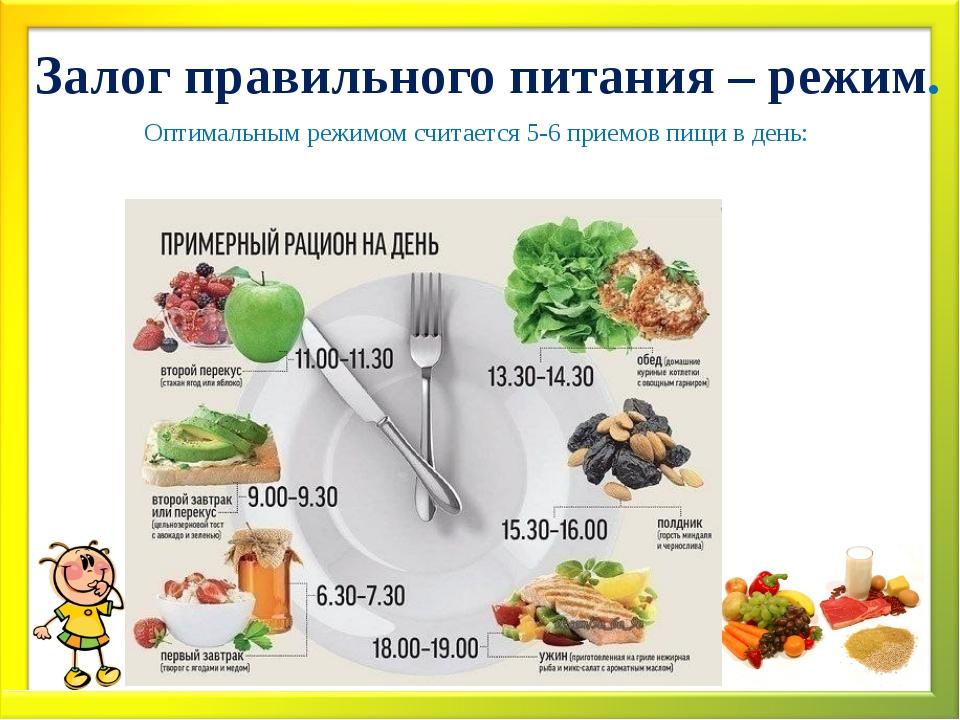 Залог правильного питания – режим. Оптимальным режимом считается 5-6 приемов...