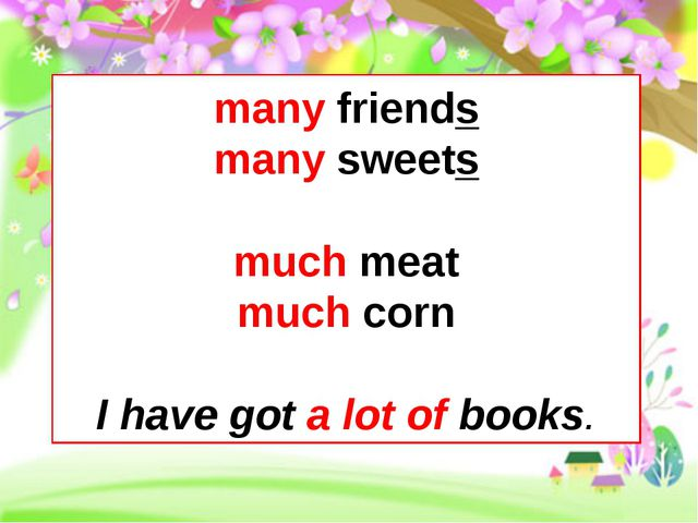 many friends many sweets much meat much corn I have got a lot of books.