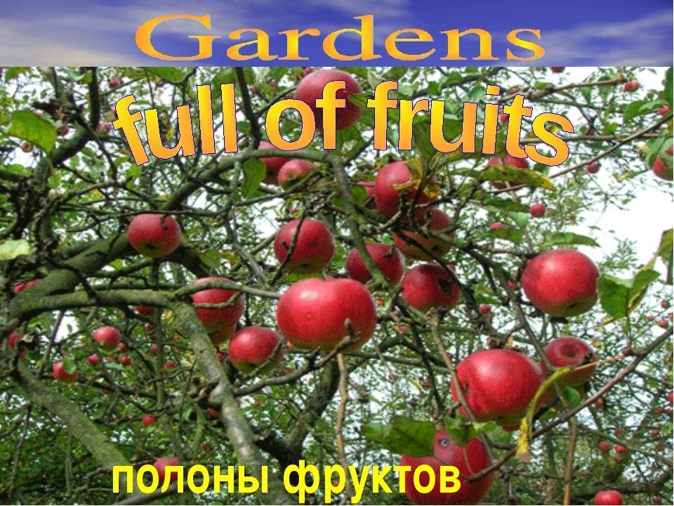 полоны фруктов