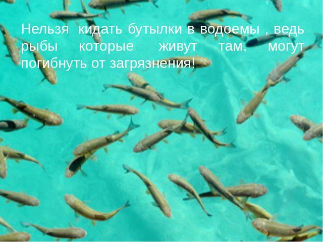 Нельзя кидать бутылки в водоемы , ведь рыбы которые живут там, могут погибн...