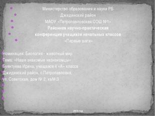 Министерство образования и науки РБ Джидинский район МАОУ «Петропавловская С