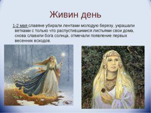 Живин день 1-2 мая славяне убирали лентами молодую березу, украшали ветками с