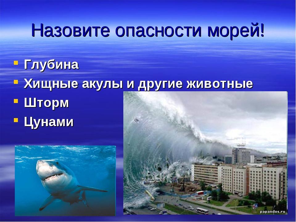 Назовите опасности морей! Глубина Хищные акулы и другие животные Шторм Цунами