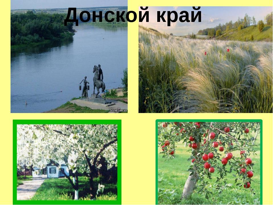Донской край