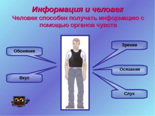Информация и человек Зрение Слух Осязание Обоняние Вкус Человек способен полу