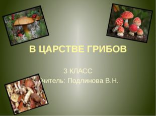 В ЦАРСТВЕ ГРИБОВ 3 КЛАСС Учитель: Подлинова В.Н.