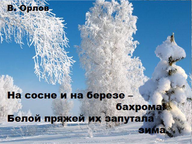 После снега – снегопада Лес – сплошные чудеса