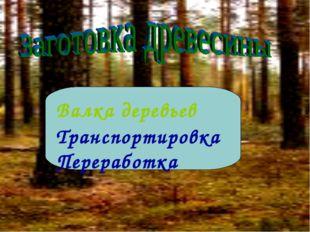 Валка деревьев Транспортировка Переработка