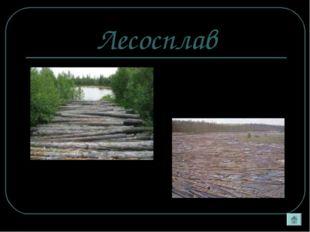 Лесосплав