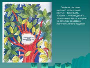 «Казахстан должен восприниматься во всем мире как высокообразованная страна,