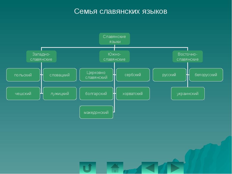 Алтайская языковая семья Языковая группа Народы языковой группы Тюркская Турк...