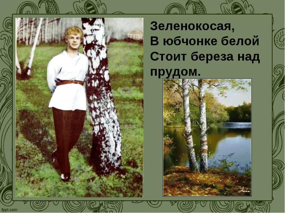 Зеленокосая, В юбчонке белой Стоит береза над прудом.