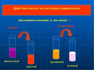Действие кислот на растворы индикаторов фиолетовый красный оранжевый розовый