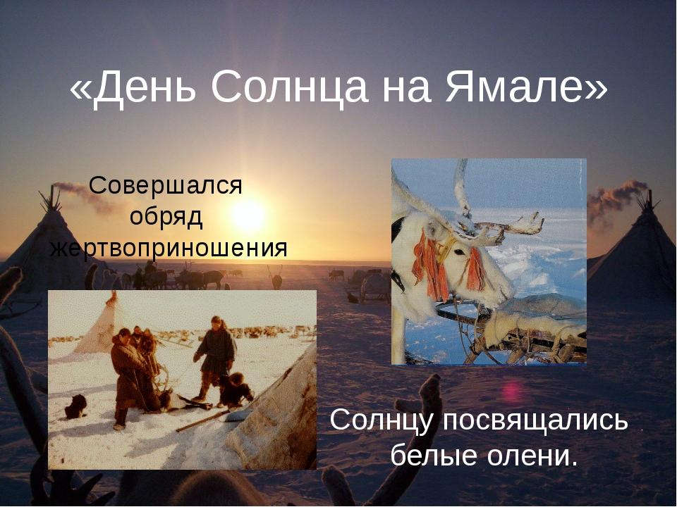 «День Солнца на Ямале» Солнцу посвящались белые олени. Совершался обряд жертв...