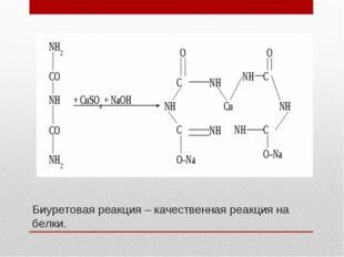 Биуретовая реакция – качественная реакция на белки.