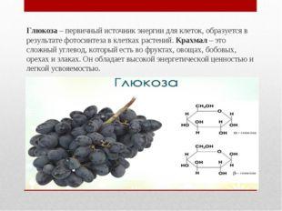 Глюкоза– первичный источник энергии для клеток, образуется в результате фото