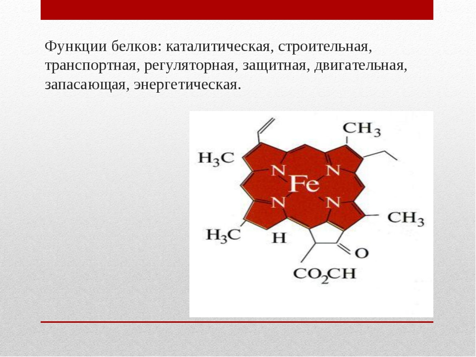 Функции белков: каталитическая, строительная, транспортная, регуляторная, защ...
