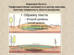Верховое болото. Торфонакопление начинается в центре массива, поэтому поверхн