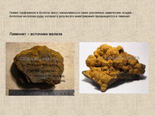 Поимо торфяников в болотах могут накапливаться также различные химические оса