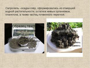 Сапропель –осадки озёр, сформировались из отмершей водной растительности, ост