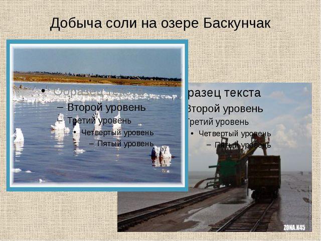 Добыча соли на озере Баскунчак