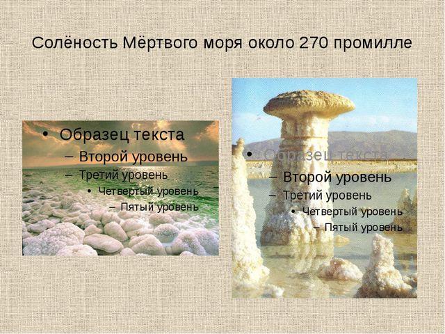 Солёность Мёртвого моря около 270 промилле