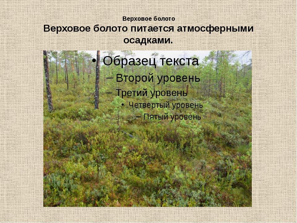 Верховое болото Верховое болото питается атмосферными осадками.