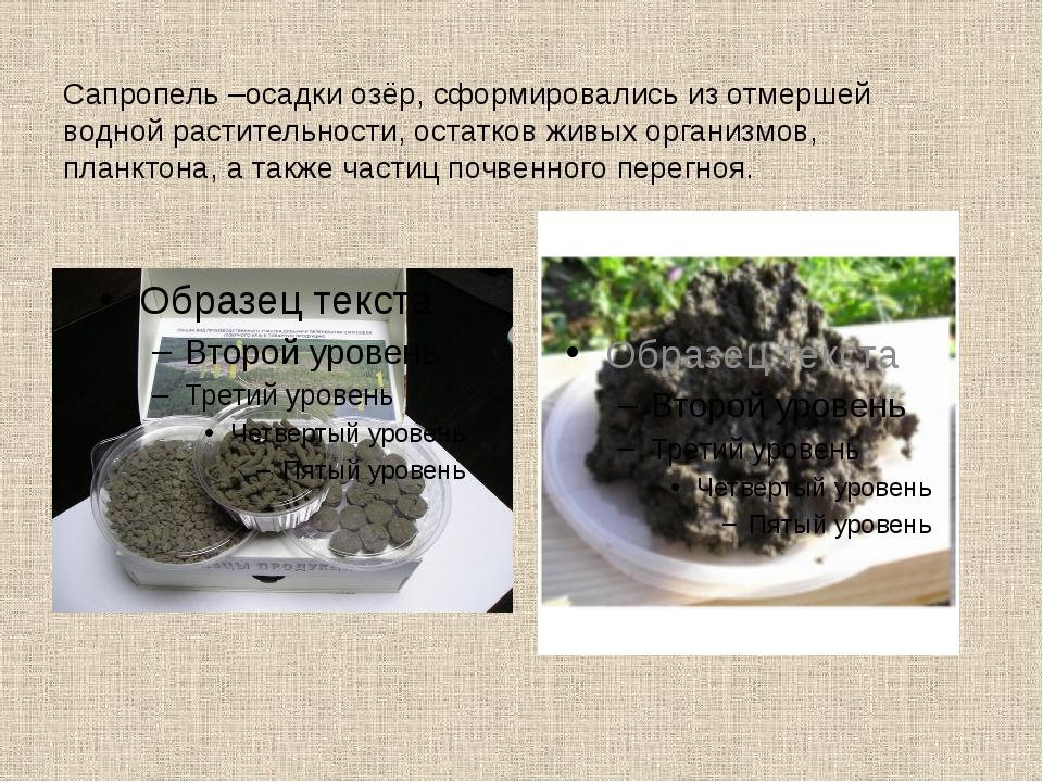 Сапропель –осадки озёр, сформировались из отмершей водной растительности, ост...
