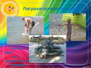 Лягушки-путешественницы Черное море пос. Лермонтово и г. Горячий ключ 2008 г.