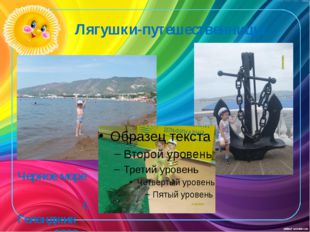 Лягушки-путешественницы Черное море г. Геленджик 2009 г.