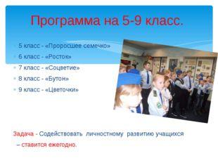 5 класс - «Проросшее семечко» 6 класс - «Росток» 7 класс - «Соцветие» 8 класс