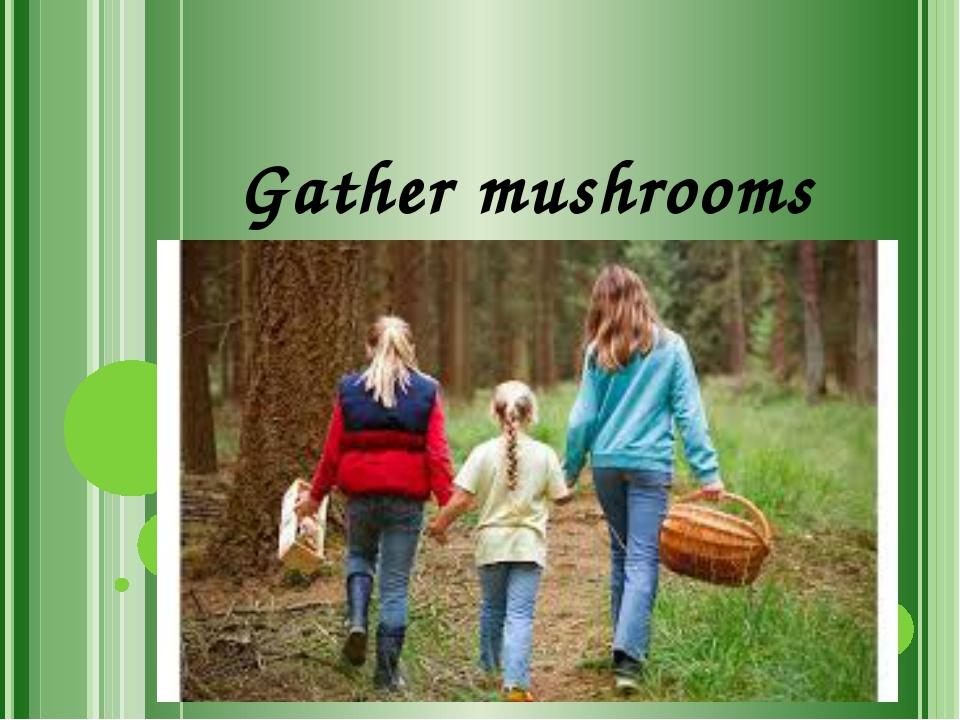 Gather mushrooms