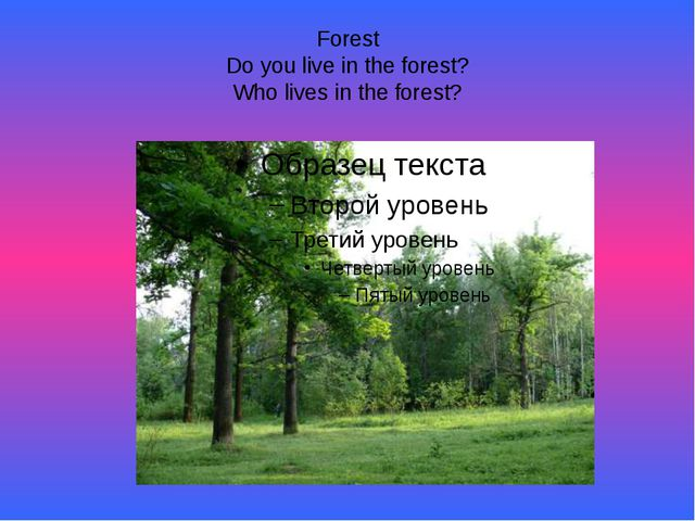 Forest Do you live in the forest? Who lives in the forest?