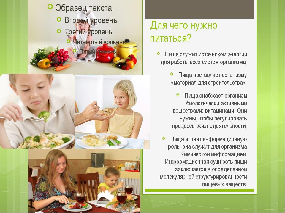 Для чего нужно питаться? Пища служит источником энергии для работы всех систе...