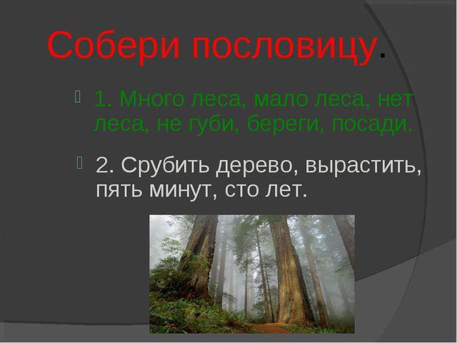 Собери пословицу. 1. Много леса, мало леса, нет леса, не губи, береги, посад...