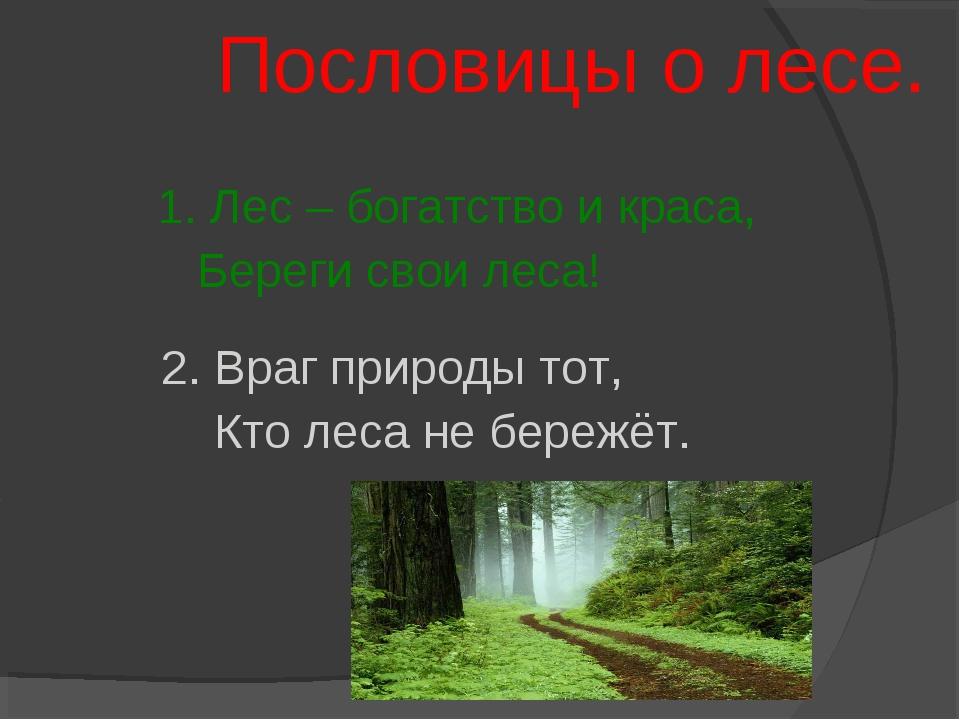 Пословицы о лесе. 1. Лес – богатство и краса, Береги свои леса! 2. Враг прир...