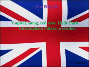 Capital, smog, red rose, Hyde Park, Buckingham Palace, a symbol Sea-field The