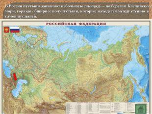 В России пустыни занимают небольшую площадь – по берегам Каспийского моря, го